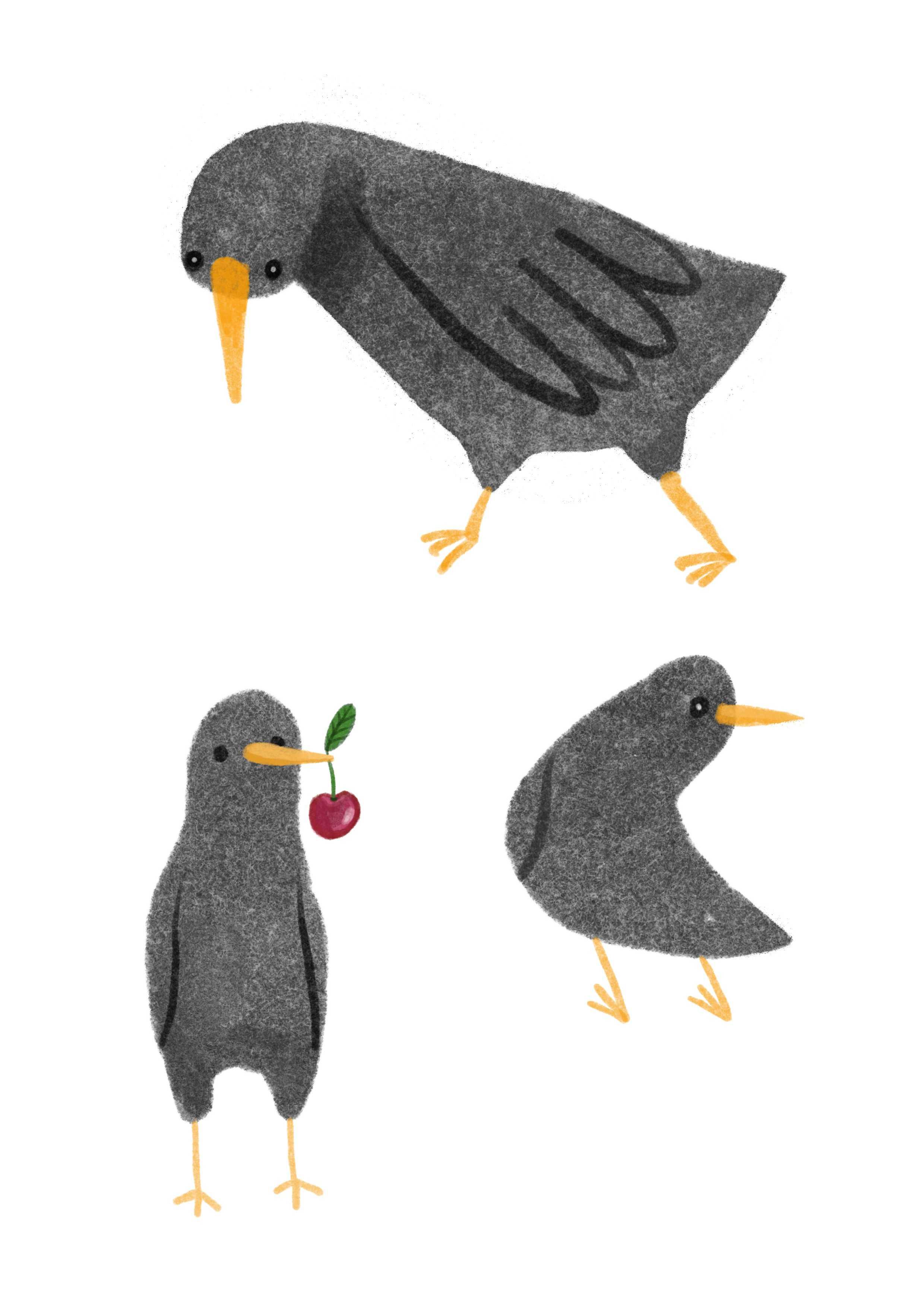 Ilustracja z ptakiem